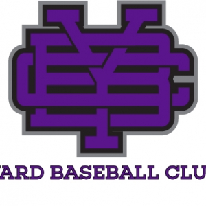 Yard Baseball Club