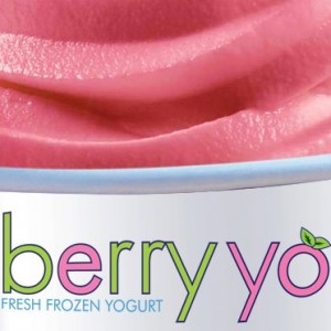 Berry Yo Frozen Yogurt