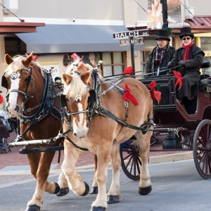 Things to do in Ashburn-Leesburg, VA for Kids: Holiday Horse-Drawn Carriage Rides, Village at Leesburg