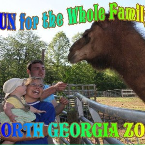 North Georgia Zoo (home of Wildlife Wonders and Paradise Valley Farm!)