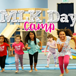 Things to do in Ridgewood-Paramus, NJ for Kids: MLK Camp at My Gym Glen Rock, My Gym Glen Rock