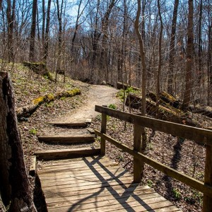 Withrow Nature Preserve