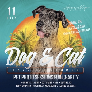 Dog & Cat Days - Pet Photos for Charity