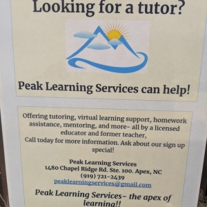 Peak Learning Services