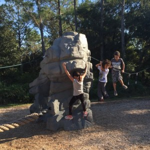 New Tampa Nature Park: Explore Nature and Climb Together