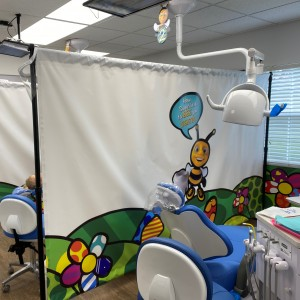 Dr. Bee Pediatric Dentistry - Wesley Chapel & Land O Lakes