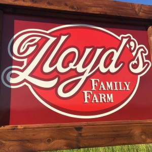 Lloyd's Family Farm