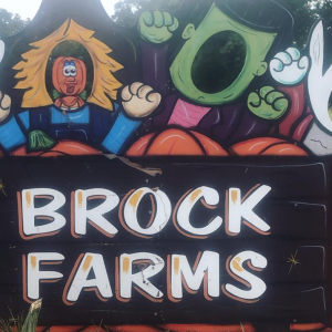 Brock Farms Garden Center