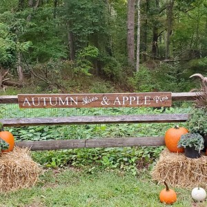 The Historic Village at Allaire: Yesterday and Today