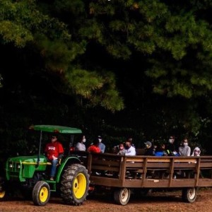 Phillips Farm of Cary, NC