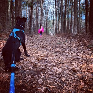 Goddard Memorial State Park: Hike through the Trails