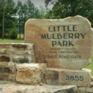 Little Mulberry Park