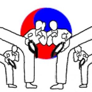 Family Martial Arts Studio