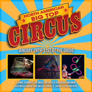 Things to do in Wesley Chapel-Lutz, FL for Kids: North American Big Top Circus, Lifestyle Festivals