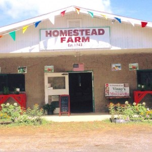 Homestead Farm