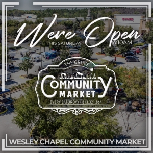 Things to do in Wesley Chapel-Lutz, FL for Kids: Wesley Chapel Community Market, The Lesson Company