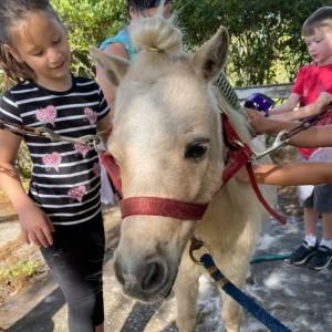 Licciardello Stables: Horseback Camp