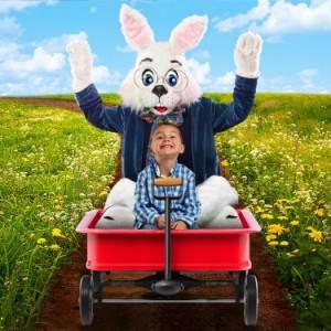 Create Bunny Magic Online