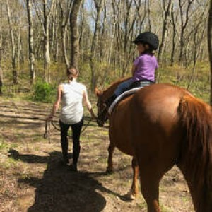 Yellow Horse Therapy