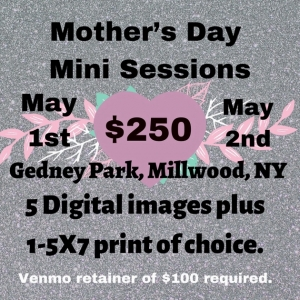 Westchester North, NY Events: Mommy & Me Mini Photo Sessions