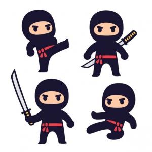 Apex-Cary, NC Events: Ninja Training