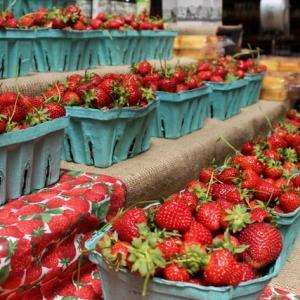 Strawberry Festival at Linvilla Orchards