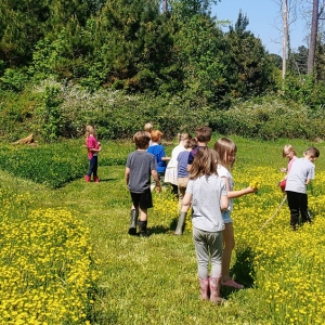 Wildflower School at Belle Vie Farm