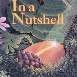 Concord, NH Events: Tale Trail - In a Nutshell