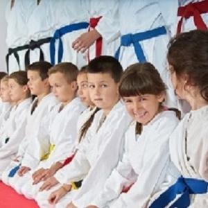 The Self Defense Institute