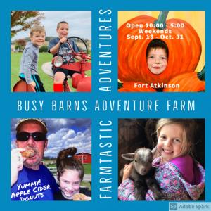 Busy Barns Adventure Farm