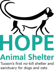 A no-kill animal shelter for dogs and cats