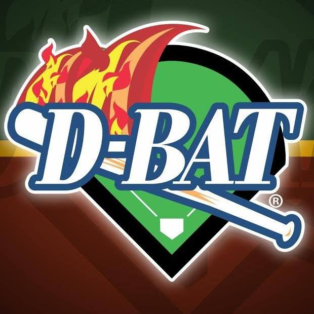 D-BAT Peoria: President's Day Camp 2019