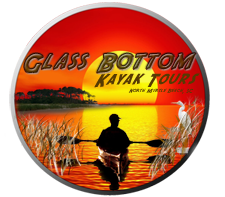 Glass Bottom Kayak Tours