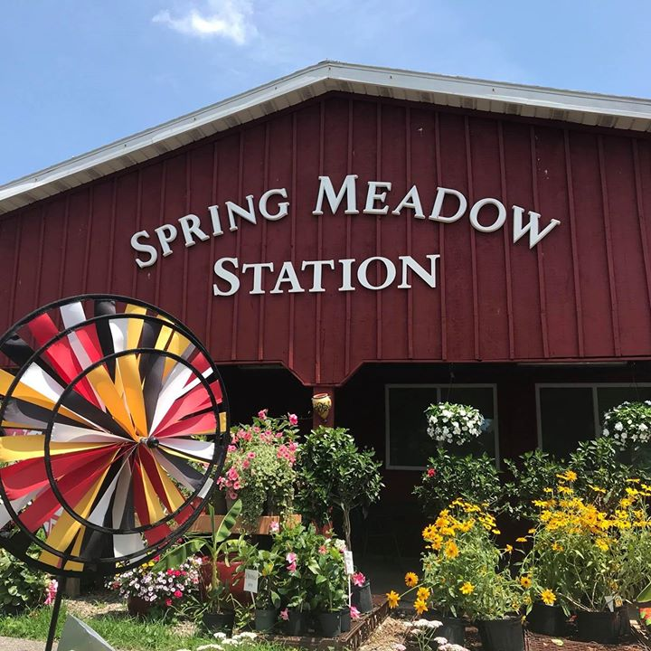 Spring Meadow Station