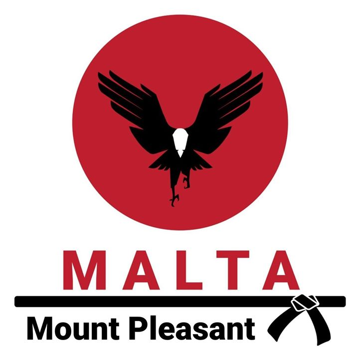 Mount Pleasant Family Martial Arts - MALTA school