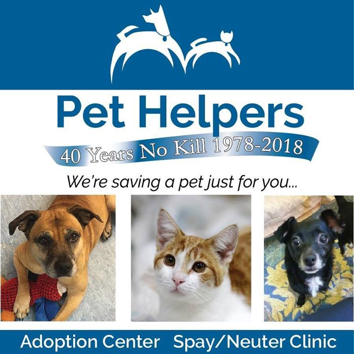 Pet Helpers Adoption Shelter and Spay/Neuter Clinic: Celebrate Your Birthday