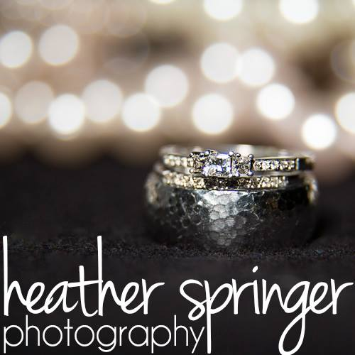 Heather Springer Photography