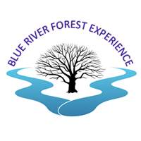 Blue River Forest Experience