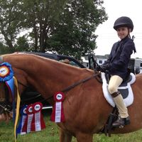Adam's Acres Farm: (Summer) Horsemanship Camp (Ages 8-15)