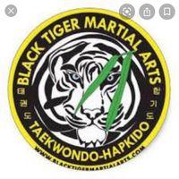 Black Tiger Martial Arts, York